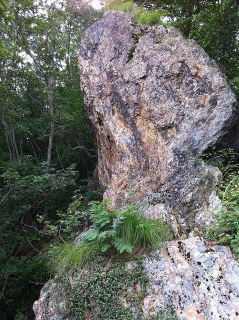 登山の感想:鶏足山(けいそくさん)/茨城県城里町と栃木県茂木市との境
