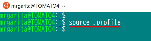 WSLでGUIアプリ実行エラー:Error: Can't open display:の対処法