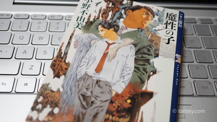 本の感想:魔性の子/十二国記シリーズ第1作